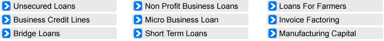 business-secure-loans
